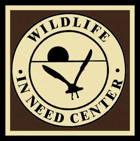 Baby Bird Feeding Program Wildlife in Need Center Pancake Breakfast Holiday meet and greet Lake Country Family Fun