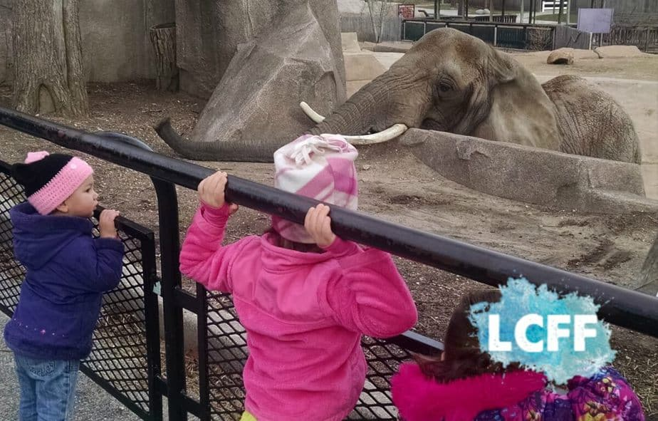 Weekend Guide Free Zoo Day Milwaukee County Zoo Lake Country Family Fun