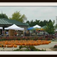 Ebert's Greenhouse Village Craft Fair Ixonia