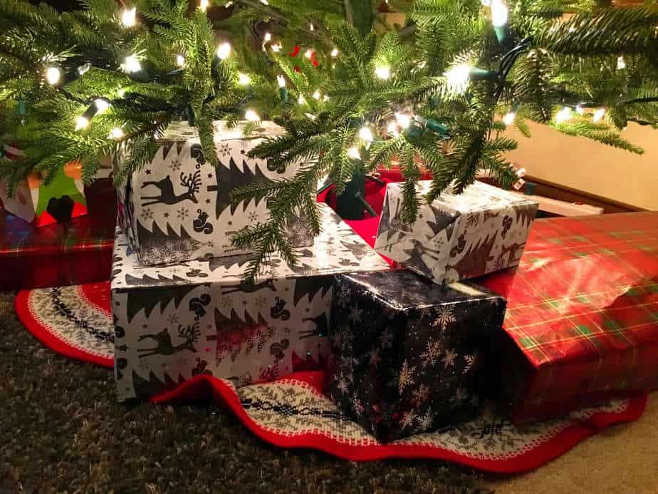 5 Ways to Stay Sane During Christmas Week Lake Country Family Fun