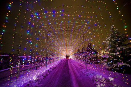 Country Christmas holiday lights