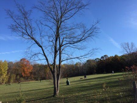 Waukesha County Parks Tour: Minooka Park