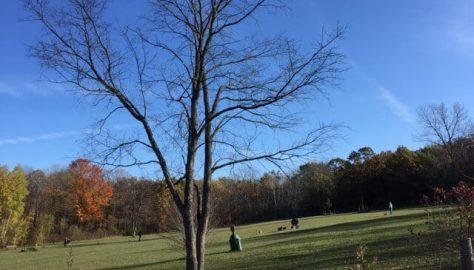 Weekend Guide Waukesha County Parks Tour: Minooka Park