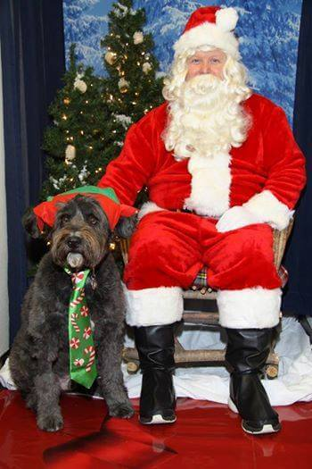 Selfies with Santa at the Doggy Bag LLC in Downtown Oconomowoc Lake Country Family Fun