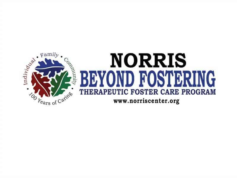 Information Meeting - How to Become a Therapeutic Foster Parent