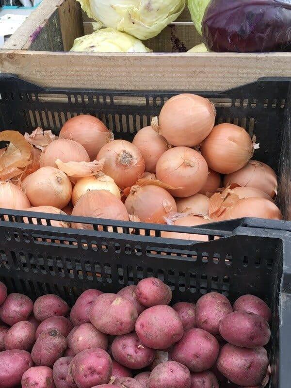 Oconomowoc Farmers Market 3