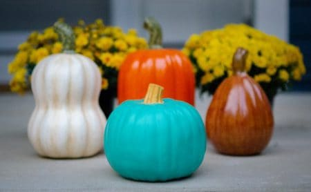 The Scoop on the Teal Pumpkin Project