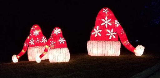 Holiday Light Displays Guide
