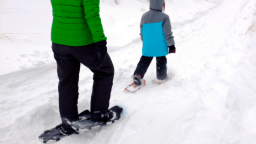 Snowshoe Guide Winter Lake Country