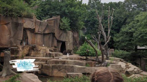 Visit Milwaukee with Kids Milwaukee County Zoo