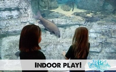 Indoor Play Fun Lake Country Family Fun