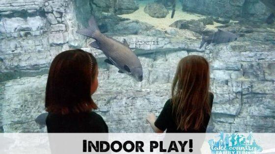 Indoor Play Fun Lake Country Family Fun