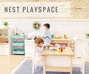 The Nest Playspace Birthday Party Guide