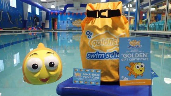 goldfish swim school black friday